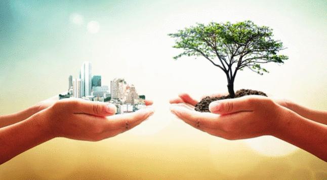 Inovação e Futuro Sustentável
